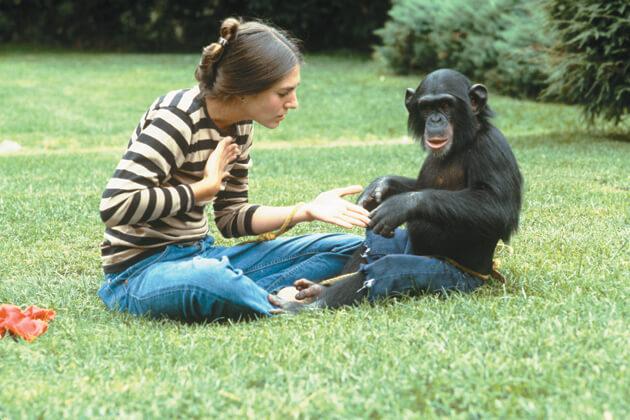 """Van az állatoknak saját """"nyelvük""""?"""